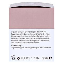 Hildegard Braukmann EXQUISIT Collagen Creme Tag 50 Milliliter - Rechte Seite
