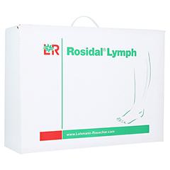 ROSIDAL Lymph Bein groß 1 Stück