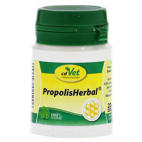 PROPOLIS HERBAL Pulver vet. 20 Gramm
