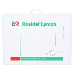 ROSIDAL Lymph Bein groß 1 Stück - Vorderseite