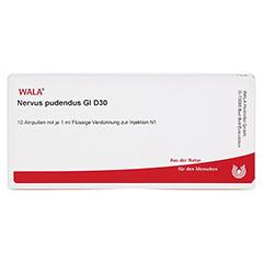 NERVUS PUDENDUS GL D 30 Ampullen 10x1 Milliliter N1 - Vorderseite