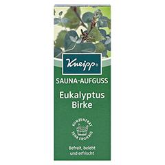KNEIPP SAUNA AUFGUSS Eukalyptus Birke 100 Milliliter - Vorderseite
