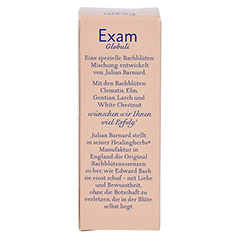BACH KOMBINATION Exam Globuli Healing Herbs 15 Gramm - Rückseite