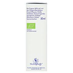 BACH KOMBINATION 5 Flow.Notfalltropf.Healing Herbs + gratis 5Flower Creme 15g 30 Milliliter - Rechte Seite