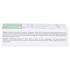 AYUNOVA Gedächtnis-Formel Kapseln 60 Stück - Rechte Seite