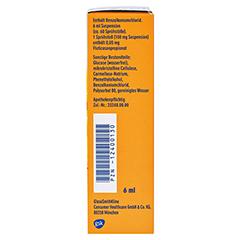 Otri-Allergie Nasenspray Fluticason 6 Milliliter N2 - Linke Seite
