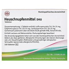 Heuschnupfenmittel DHU Tabletten 100 Stück N1 - Rückseite