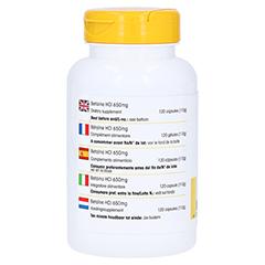 Betain HCL 650 mg Kapseln 120 Stück - Rechte Seite