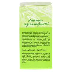 SANDDORNÖL KAPSELN 500 mg 90 Stück - Linke Seite
