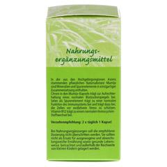 MUMIJO Kaspeln 200 mg 90 Stück - Rechte Seite