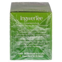 INGWER TEE Filterbeutel 20 Stück - Rechte Seite