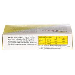 CEBION Immun 2 Kapseln 30 Stück - Unterseite