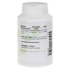 GUARANA PUR 500 mg Kapseln 120 Stück - Linke Seite