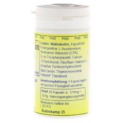 ADENOSIN 410 mg Kapseln 60 St�ck - Rechte Seite