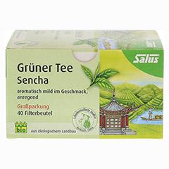 GR�NER TEE Bio Salus Filterbeutel Gro�packung 40 St�ck - Vorderseite