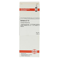 BERBERIS D 12 Dilution 50 Milliliter N1 - Vorderseite