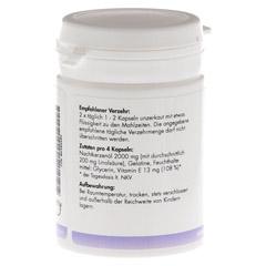 NACHTKERZENÖL 500+Vitamin E Kapseln 60 Stück - Rückseite