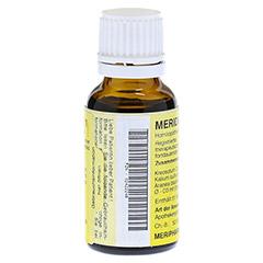 MERIDIANKOMPLEX 6 Tropfen zum Einnehmen 20 Milliliter N1 - Linke Seite