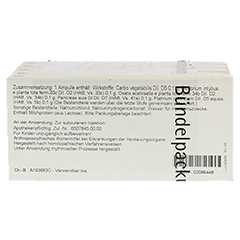 PLATINUM CHLORATUM/Pancreas comp.Ampullen 50x1 Milliliter N2 - Rückseite