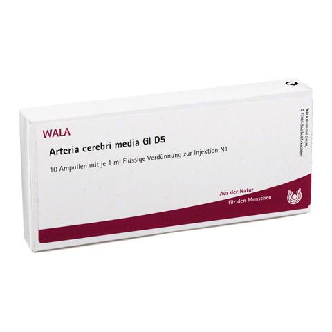 ARTERIA CEREBRI media GL D 5 Ampullen 10x1 Milliliter N1