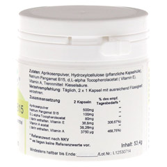 PANGAM Vitamin B15 Kapseln 120 Stück - Rechte Seite
