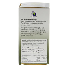 ROSENWURZ Kapseln 200 mg 60 St�ck - Rechte Seite