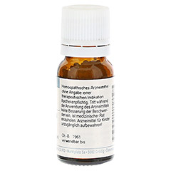 RHUS TOXICODENDRON D 4 Globuli 10 Gramm N1 - R�ckseite