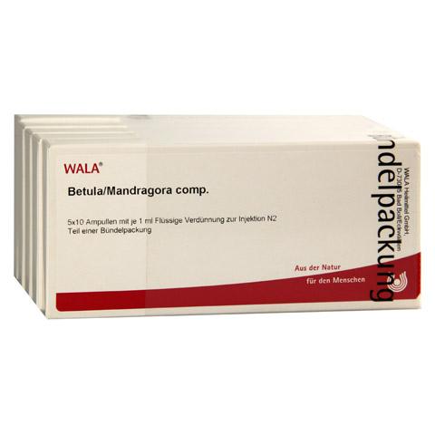 BETULA/MANDRAGORA comp.Ampullen 50x1 Milliliter N2