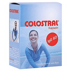 COLOSTRAL Kapseln 80 St�ck