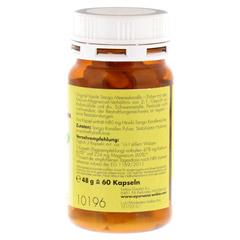 SANGO KORALLEN Kalzium Magnesium Kapseln Hinoki 60 St�ck - Rechte Seite