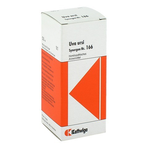 SYNERGON KOMPLEX 166 Uva ursi Tropfen 50 Milliliter N1