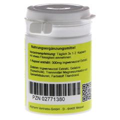 INGWER KAPSELN 300 mg 60 St�ck - R�ckseite