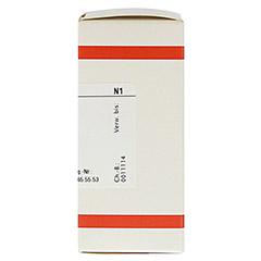 HYDROCOTYLE asiatica D 4 Tabletten 80 St�ck N1 - Rechte Seite