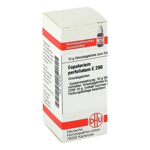 EUPATORIUM PERFOLIATUM C 200 Globuli 10 Gramm N1