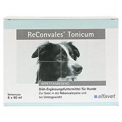 RECONVALES Tonicum für Hunde 6x90 Milliliter - Vorderseite