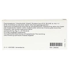 PERIOSTEUM GL D 6 Ampullen 10x1 Milliliter N1 - Rückseite