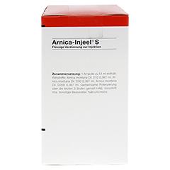 ARNICA INJEEL S Ampullen 100 Stück N3 - Rechte Seite