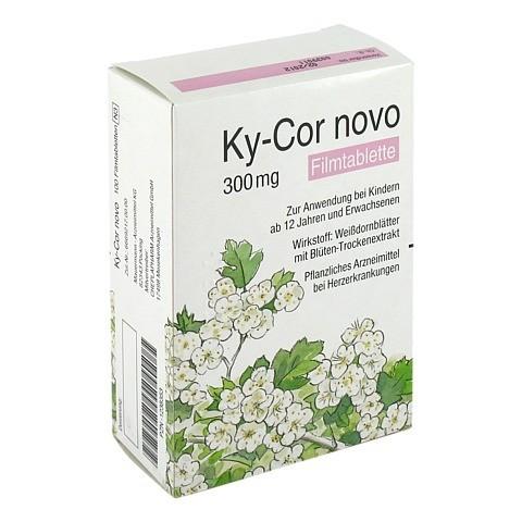 Ky-Cor novo 100 Stück