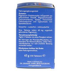 GRANDELAT MAG 60 MAGNESIUM Tabletten 120 Stück - Rechte Seite
