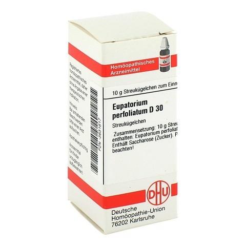 EUPATORIUM PERFOLIATUM D 30 Globuli 10 Gramm N1