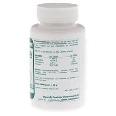 LACTASE 4.000 FCC Enzym Kapseln 100 Stück - Rechte Seite