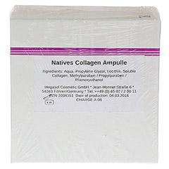 NATIVES Collagen Ampullen 10x3 Milliliter - R�ckseite