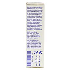 LIVOCAB ECTOMED Nasenspray 10 Milliliter - Rechte Seite