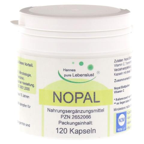 NOPAL Kaktus Vegi Kapseln 120 Stück
