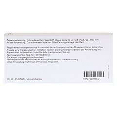 UTERUS GL D 30 Ampullen 10x1 Milliliter N1 - R�ckseite