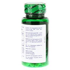 GINKGO BILOBA 120 mg Kapseln 60 Stück - Rückseite