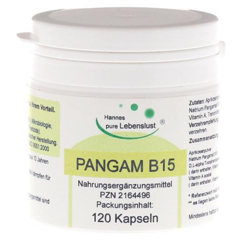 PANGAM Vitamin B15 Kapseln 120 St�ck