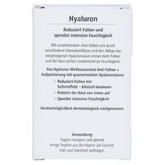 HYALURON Wirkkonzentrat Anti-Falten+Aufpolsterung 13 Milliliter - Rückseite