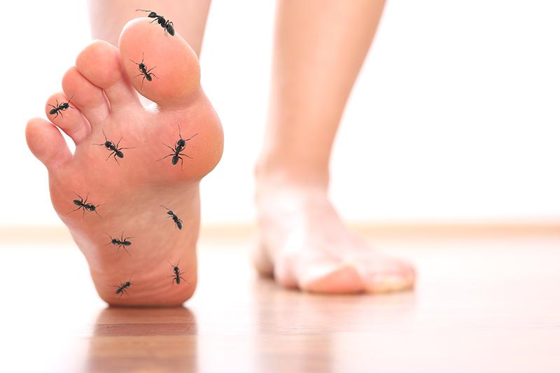 Diabetes typ 2 kribbeln in den füßen