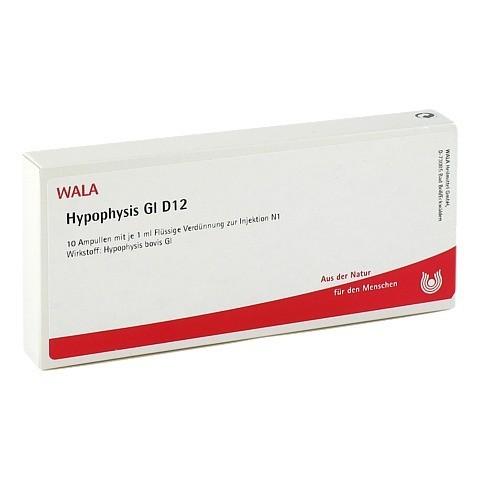 HYPOPHYSIS GL D 12 Ampullen 10x1 Milliliter N1